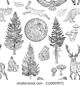 Full moon magic seamless pattern. Spruce, fir tree, mushrooms, fox, hare, deer, leaves, crystals. Hand drawn vintage tattoo engraving style vector illustration black on white. Nature, fantasy, boho.