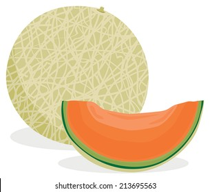 Full and sliced cantaloupe melon in solid colors