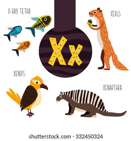 Fun animal letters of the alphabet for the development and learning of preschool children. Set of cute forest, domestic and marine animals with the letter x. Vector illustration