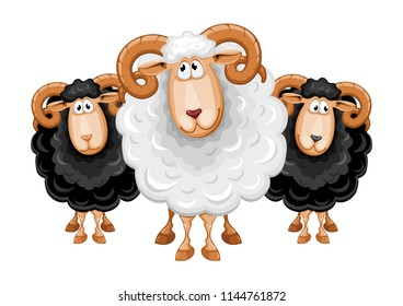 Fun cartoon sheeps, black colored and white. Vector illustration. Isolated on white background.