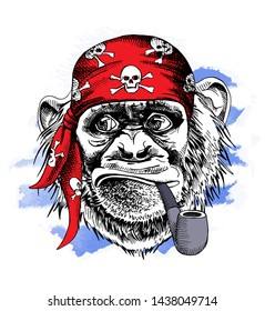 Fun Monkey in a red pirate bandana and with a tobacco pipe on a striped blue background. Humor card, t-shirt composition, hand drawn style print. Vector illustration.