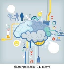 Function of human brain
