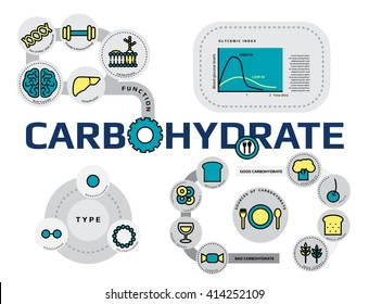 function, type and sources of carbohydrate infographic concept, thin flat line icon template for website or banner, medical supplement and nutrition vector illustration.