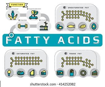 飽和 脂肪酸 不