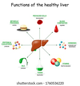Functions of the healthy liver. From detoxification, and deactivation of poisons and toxins, to synthesis of bile, proteins, Amino acids and cholesterol. metabolism.