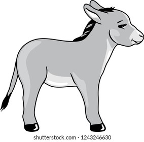 Funny baby donkey. Vector