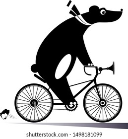 Funny bear rides a bike illustration. Cartoon bear rides a bicycle black on white illustration