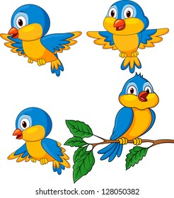 Funny birds cartoon set