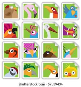 Funny birds set (Vector Illustration for web design)