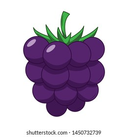 Funny blackberry in cartoon style. Concept Fruits and vegetables. Summer.