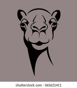 funny camel face vector illustration for T shirt, poster, print design.