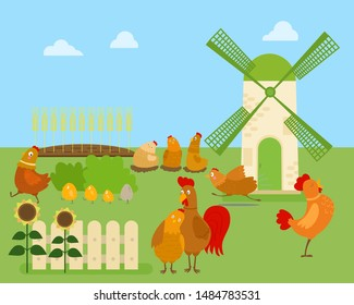 Funny cartoon chicken, hen and rooster in various poses, vector illustration with green rural background and windmill. Cute funny chicken running, standing, sitting, with eggs