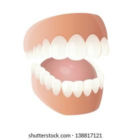 funny cartoon denture