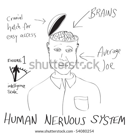 funny cartoon diagram man his 450w 54080254 cartoon head diagrams great installation of wiring diagram \u2022