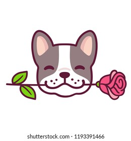 Funny cartoon French Bulldog puppy holding rose in mouth. Cute Valentines day dog greeting card vector illustration.