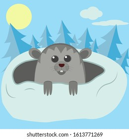 Funny cartoon Groundhog. Vector isolated illustration of flat color. The concept of Groundhog Day. A cute Groundhog peeks out of a mink. Picture of your design with your text, postcard, banner