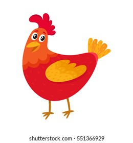 Funny cartoon red and orange chicken, hen standing and smiling happily, cartoon vector illustration isolated on white background. Cute and funny colorful chicken, fire rooster