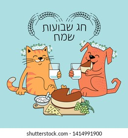 Funny cat and dog celebrate the Jewish holiday of Shavuot. Happy Shavuot text in Hebrew.