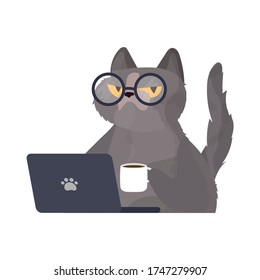 Funny cat in glasses sits at a laptop and holds a cup of coffee. Cat sticker with a serious look. Good for stickers, t-shirts and postcards. Isolated. Vector.