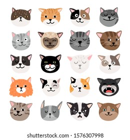 Funny cats face emtions. Cute funny cat characters faces, animals emtion set, happy and angry, sad and haughty mood heads