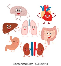Funny characters of human internal organs. flat vector illustration set. is insulated on white background. easy to use
