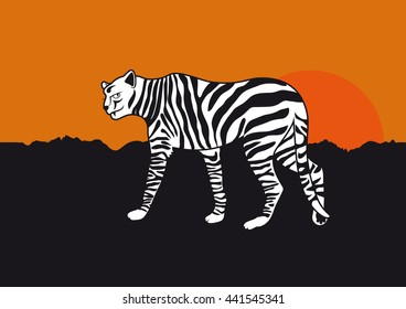Funny Cheetah Cartoon. Black-and-white stripes. Feline dressed as a zebra