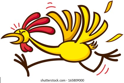 Funny chicken looking anxious and worried while flapping and running away in a distressed way