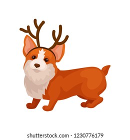 Funny corgi dog with reindeer horn hoop. Adorable home pet. Domestic animal. Flat vector element for postcard