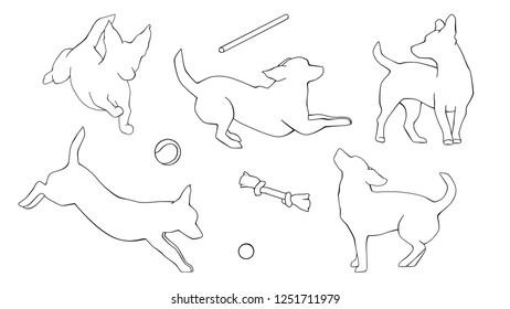 Royalty Free Dog Running White Background Stock Images Photos