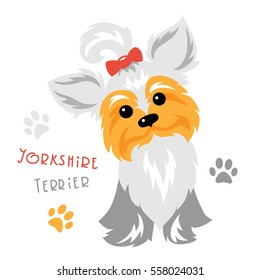 Funny dog silver blue and pale cream Yorkshire terrier breed sitting vector. Cute Yorkie.