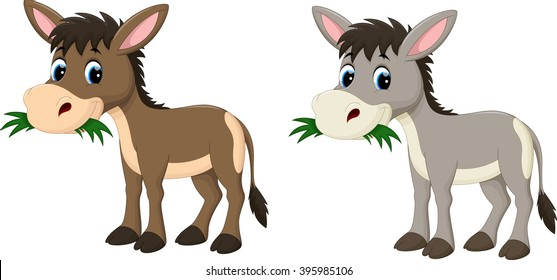 Funny donkey eating grass