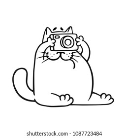 Funny fat cat photographer. Vector illustration. Pet character.