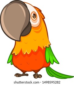 Funny fat orange parrot with a large beak