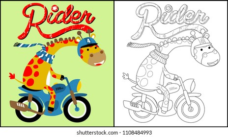 Funny giraffe cartoon on motorcycle, coloring book or page, vector cartoon illustration