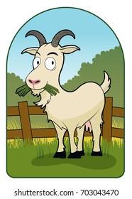 Funny Goat / A goat eats grass,