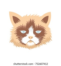 funny grumpy cat illustration. vector. editable. isolated