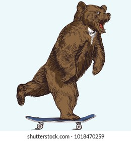 funny illustration of a hungry bear rides on a skateboard vector