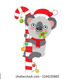 Funny Koala Christmas Vector. Merry Christmas From Australia Koala Christmas Card. Cute Animal Cartoon Character Holiday Vector Illustration On A White Background.