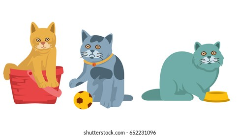 funny little cats vector
