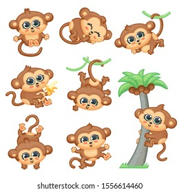 Funny monkey various activities set of cartoon vector illustration isolated on white background. Cute little jungle or zoo chimp animal characters Collection.