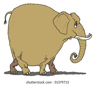 A funny old elphant