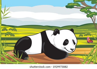 Funny panda plays with a butterfly. Vector