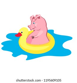 Funny pig bathes with an inflatable duckling in a puddle. Vector illustration.