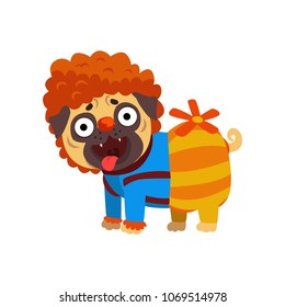 Funny pug dog character dressed as Carlson, funny dog with a propeller vector Illustration on a white background