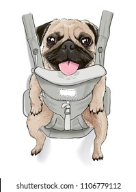 funny pug dog on front carrier illustration for fun t shirt