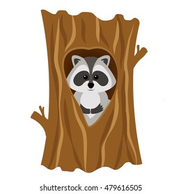 Funny raccoon inside tree in hollow, isolated on white background. Adorable vector raccoon. Cute cartoon pet. Charming baby raccoon.