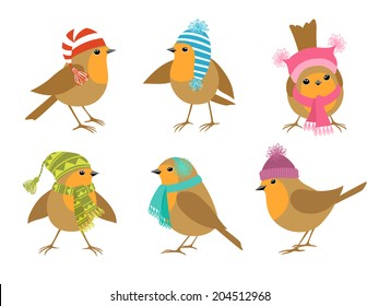 Funny Robins birds in winter hats.
