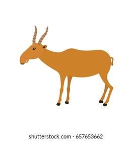 Funny Saiga Antelope