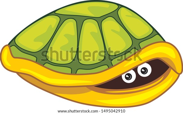 funny-scared-turtle-hide-own-600w-149504