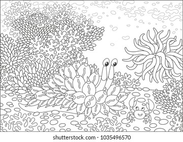 Funny tropical mollusc and a friendly smiling crab on a coral reef, black and white vector illustrations in a cartoon style for a coloring book